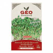 Géo - Brocolis - Graines à germer bio - 13g