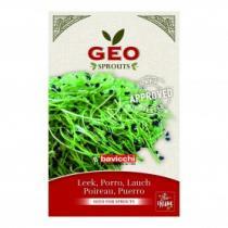 Géo - Poireau - Graines à germer bio - 6g