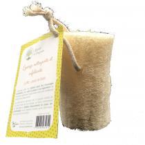 Abricot et Bergamote - Cylindre de luffa