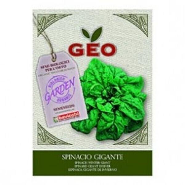 Géo - Semences pour Epinard Geant d'Hiver Bio 10g
