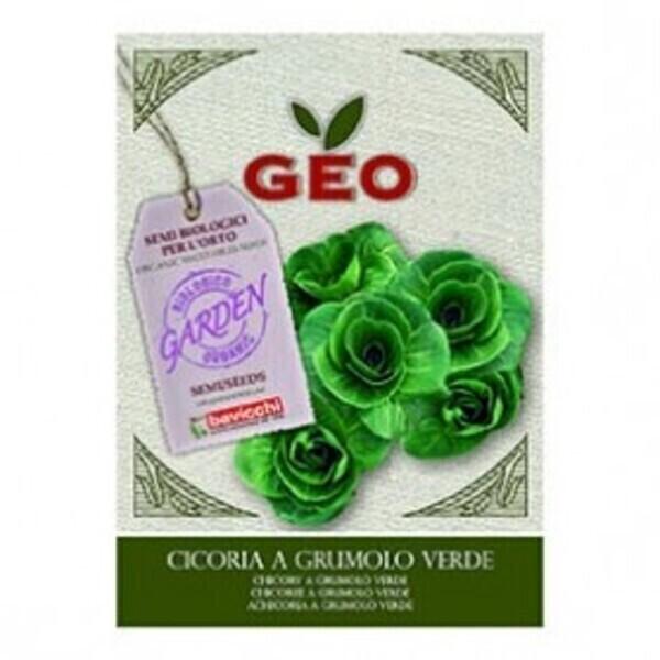 Géo - Semences pour Chicorée à Grumulo Verde Bio 6g