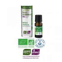 Laboratoire Altho - Basilic Tropical Huile Essentielle Bio Chemotypee - 10ml