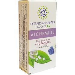 Kosmeo B - ALCHEMILLE Teinture Mère plantes fraîches Granules - 0% ALCOOL