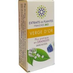 Kosmeo B - VERGE D'OR Teinture Mère de plantes fraiches Granules 0% ALCOOL