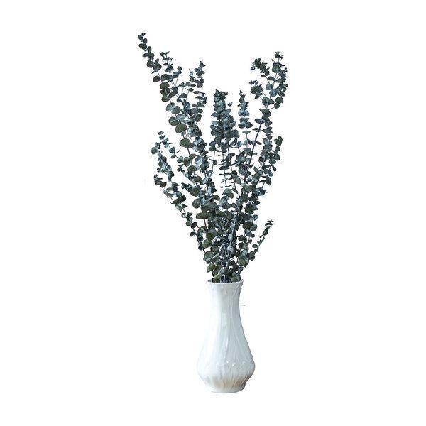 Réconciliation Végétale - Botte de fleurs sechees : Eucalyptus baby stabilise