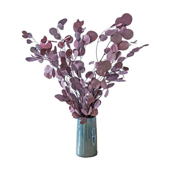 Réconciliation Végétale - Botte de fleurs sechees : Eucalyptus populus rouge