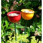 Wildlife World - Colour Cup Wild Bird Feeder