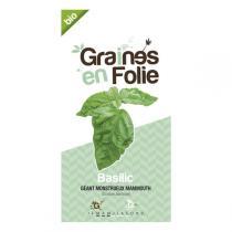 Graines en Folie - Organic Basil Seeds