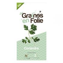 Graines en Folie - Coriander Seeds 1g
