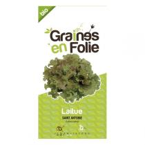 Graines en Folie - Graines de Laitue Saint Antoine