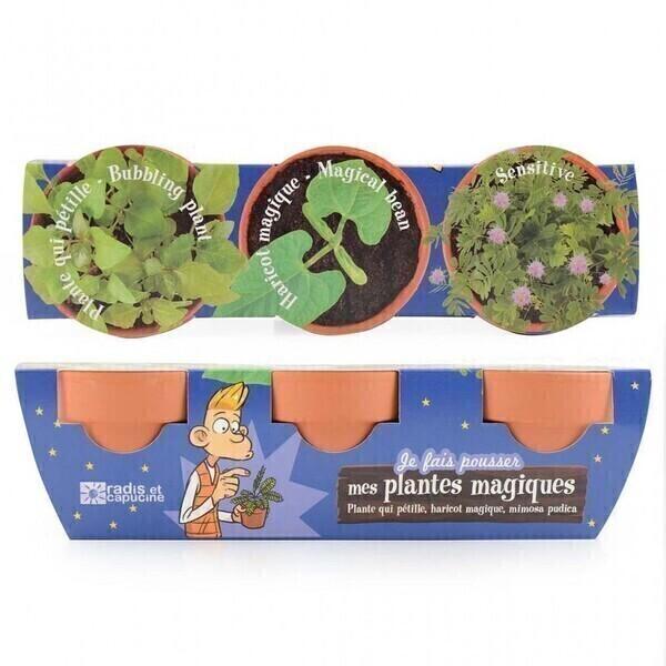 Radis et Capucine - Trio de pot plantes magiques