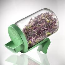 Germ'line - Small glass Sprouting Jar