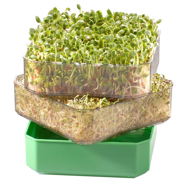 Germ'line - 2-Tray Seed Sprouter