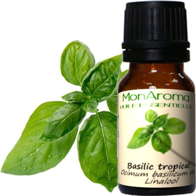 MonAroma - Huile essentielle de Basilic tropical - 10ml