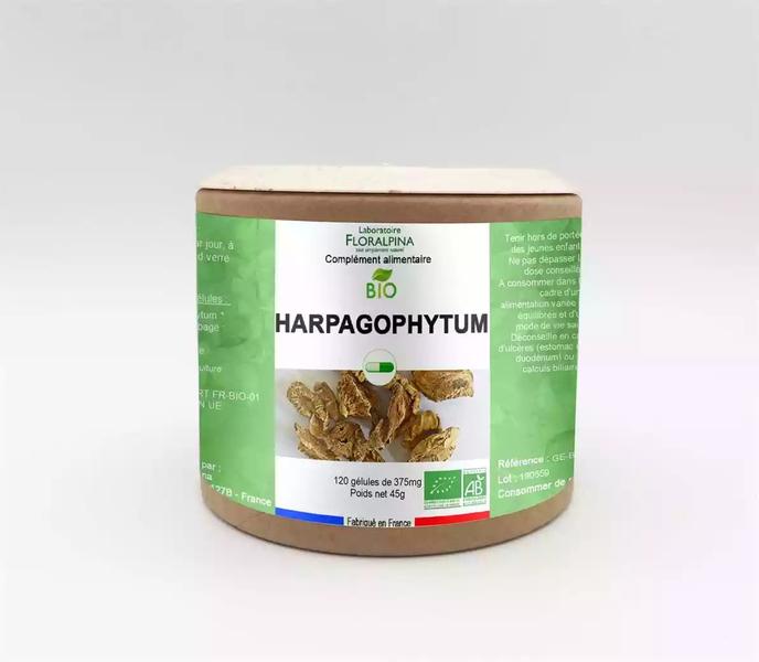 Rue des Plantes - Harpagophytum bio 120 gélules