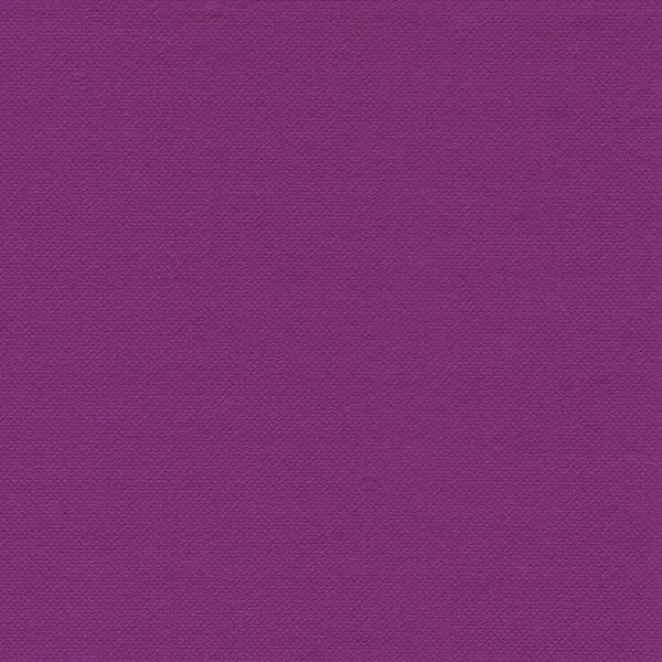 "PAPSTAR - 20 Serviettes ""Royal Collection"" - Violet"