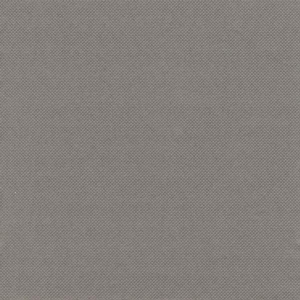 """PAPSTAR - 20 Serviettes """"Royal Collection"""" - Gris"""