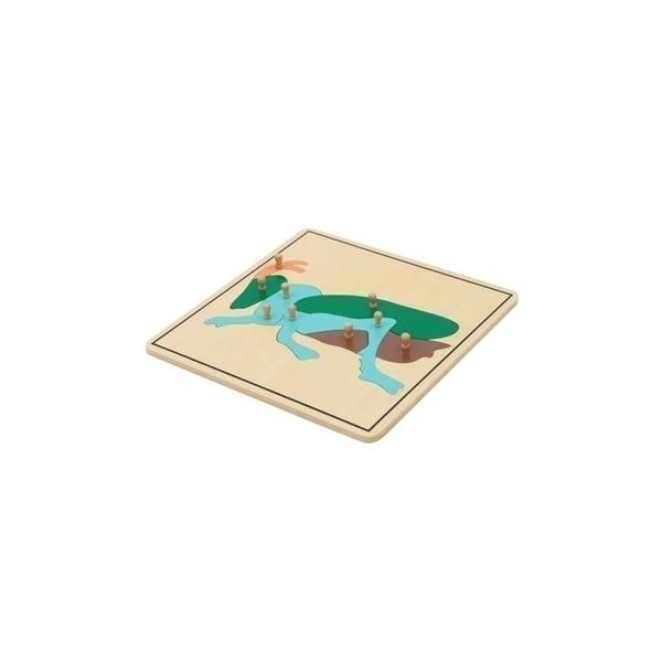 MontessoriSamuserAutrement - Puzzle Criquet Haut de gamme