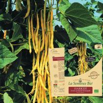 La Semence Bio - HARICOT beurre grimpant Neckargold Bio