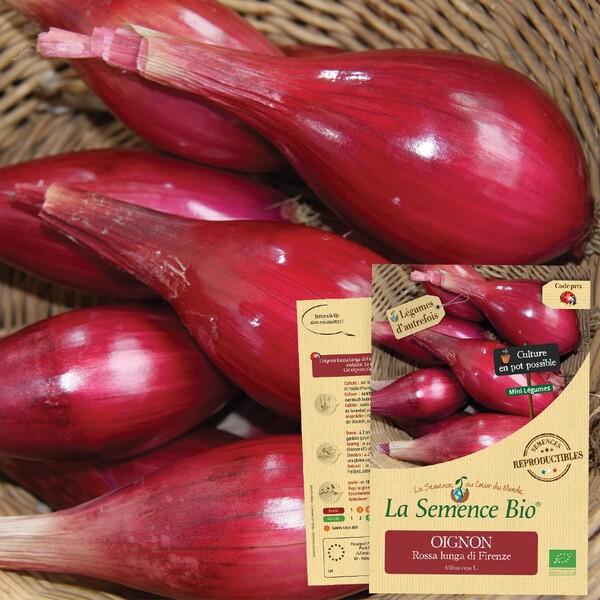 La Semence Bio - OIGNON Rossa lunga di Firenze Bio