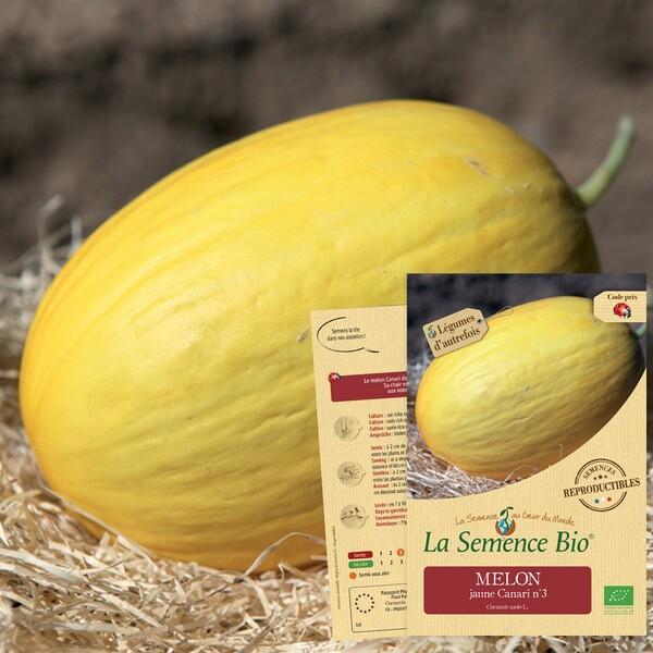 La Semence Bio - MELON jaune Canari N 3 Bio