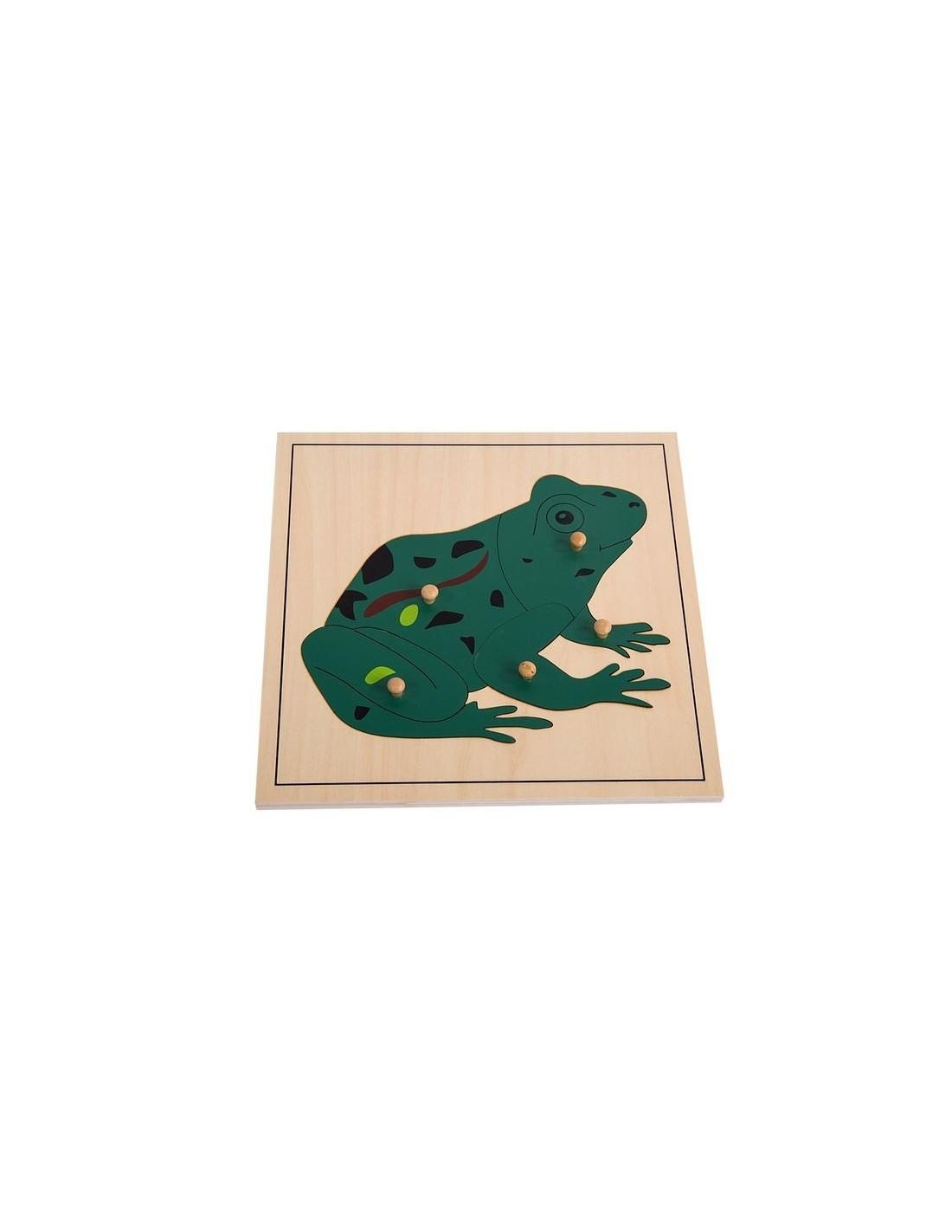 MontessoriSamuserAutrement - Puzzle Grenouille