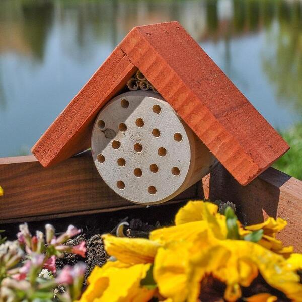 Nestbox - Hôtel à abeilles maçonnes rouges en pin massif