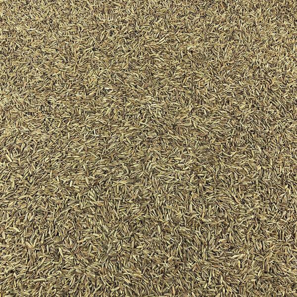 Vracbio - Cumin Graines Bio en Vrac 0,25 Kg