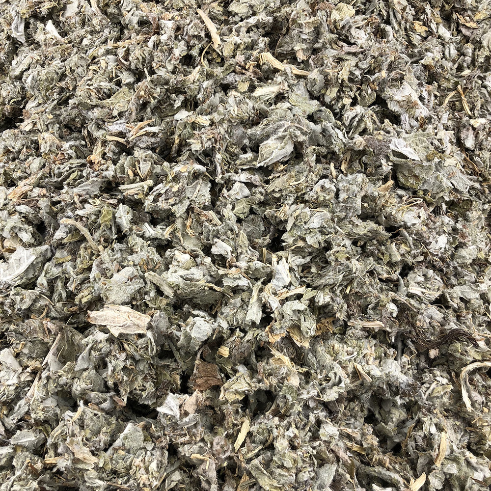 Vracbio - Artichaut Feuilles Bio en Vrac 0,5 Kg