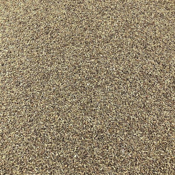 Vracbio - Anis Vert Graines Bio en Vrac 5 Kg