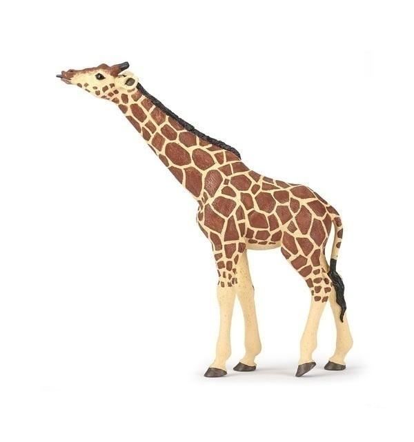 Papo - Girafe tête levée