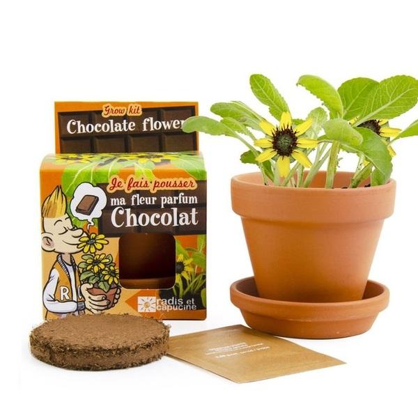 Radis et Capucine - Je fais pousser ma Plante Chocolat