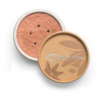 Couleur Caramel - Fond de teint BIO MINERAL Beige rosé 22
