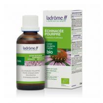 Ladrôme - Echinacée - Extrait de plante fraîche bio 50ml