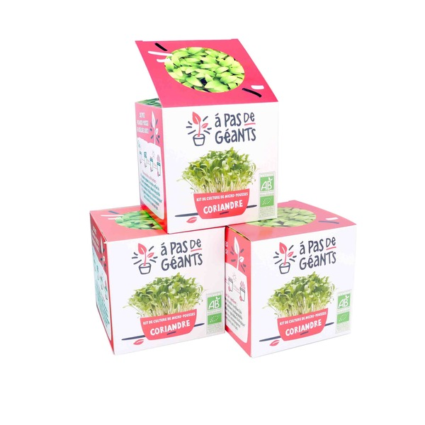 À pas de géants - 3 Kits culture micro-pousses Coriandre