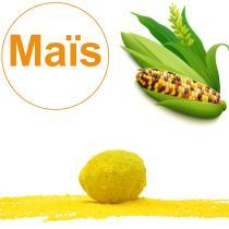 GD Bô Balcons - Bombe À Graines Avec Graines De Maïs Multicolore Bio