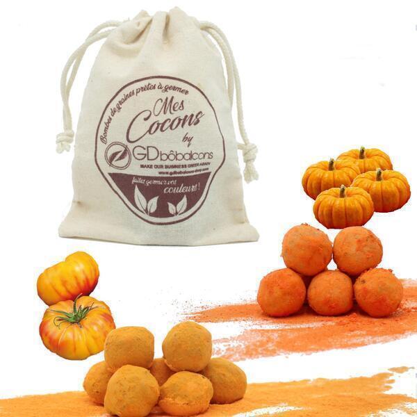 GD Bô Balcons - Pack Orange /  10 Bombes À Graines + Sac