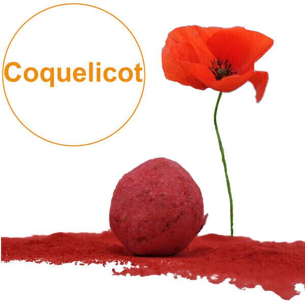 GD Bô Balcons - Bombe À Graines Avec Graines De Coquelicots Rouges Bio