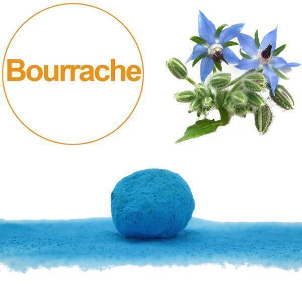 GD Bô Balcons - Bombe À Graines Avec Graines De Bourrache Bleue Bio