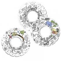 Tic Toys - MyRoodi - lot de 3 frisbees