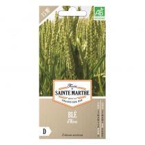 La Ferme de St Marthe - Graines à semer - Blé bio