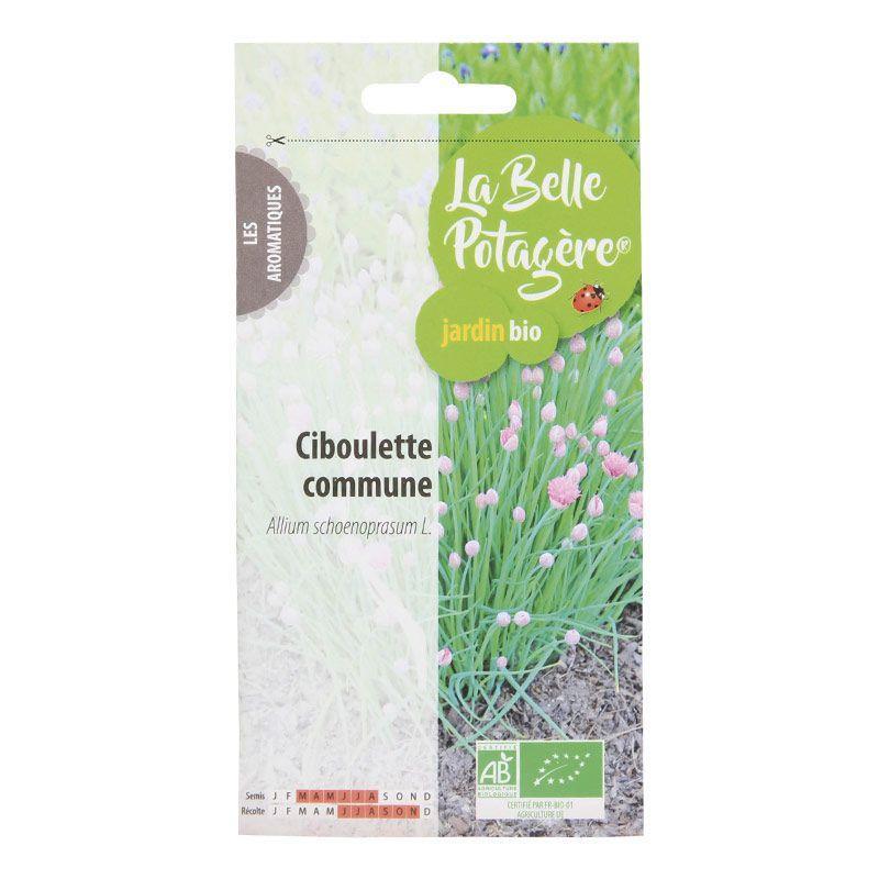 La Belle Potagère - Graines à semer - Ciboulette commune - 0,5 g