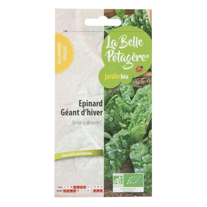 La Belle Potagère - Graines à semer - Epinard géant d'hiver - 5 g