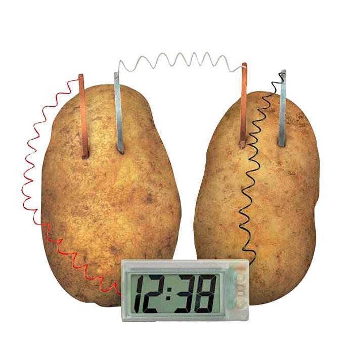 4M - Coffret découverte de la science - Patat'Horloge