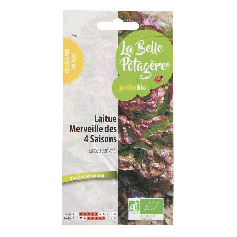 La Belle Potagère - Graines à semer - Laitue Merveille des 4 saisons - 0,5 g