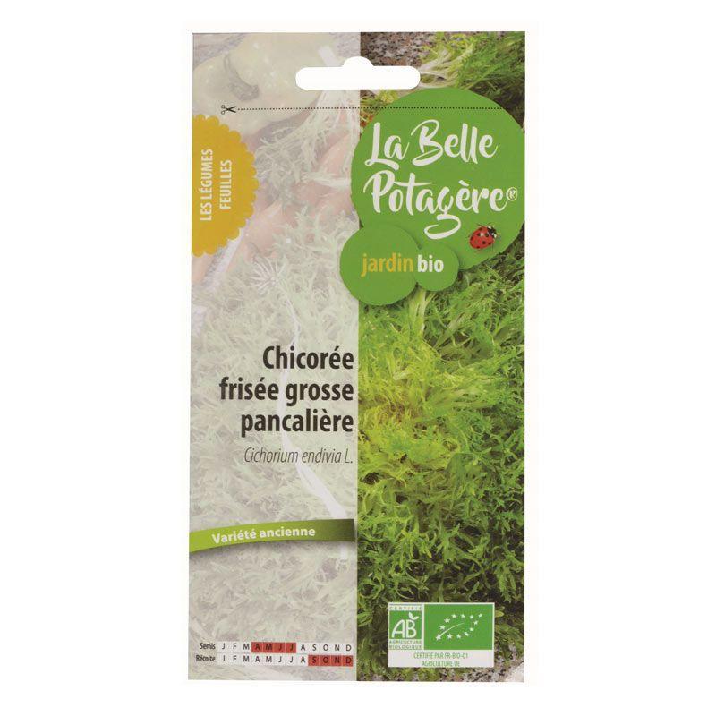 La Belle Potagère - Graines à semer - Salade frisée grosse pancalière - 0,5 g