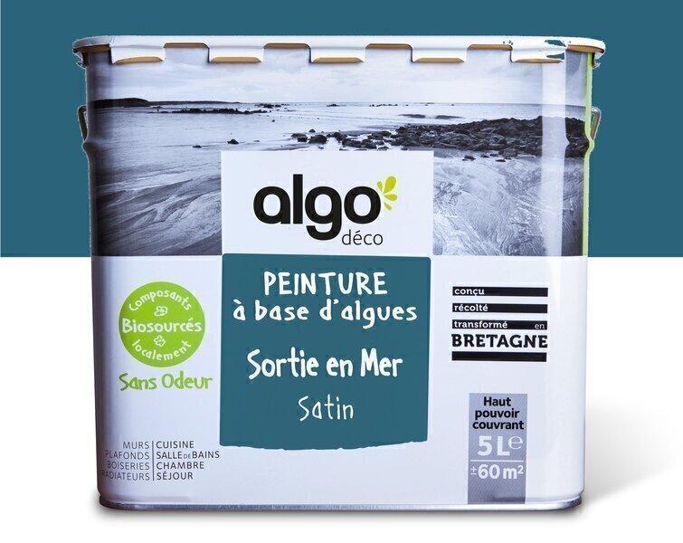 Algo Peinture - Bleue Algo à base d'algues 100% naturelles (Sortie en mer)