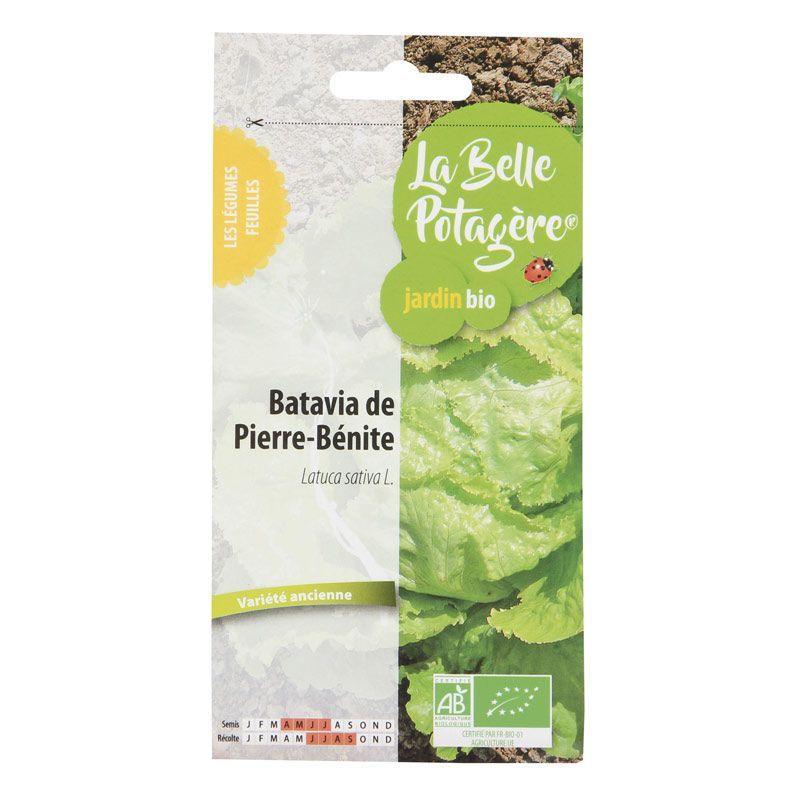 La Belle Potagère - Graines à semer - Batavia de Pierre-Bénite - 0,5 g