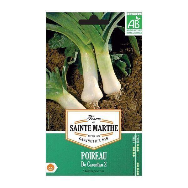 La ferme St-Marthe - POIREAU de Carentan 2 AB  - Semences reproductibles bio