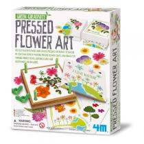 4M - Pressed Flower Art